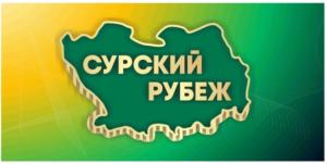 В лагере «Юность» стартовала I областная военно-спортивная игра «Сурский рубеж»