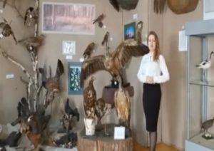 Птицы-невидимки, или как много в Пензенской области пернатых