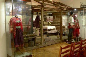 Пензенские этнографы отметили профессиональный праздник