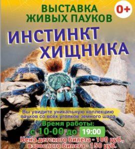 В Пензенском краеведческом музее открылась выставка паукообразных «Инстинкт хищника»