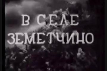 В кинохронике 30-х годов ХХ века отлично виден женский костюм села Ушинка Земетчинского района, парочка