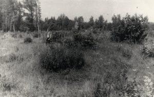 Археологическая карта Пензенской области. Насыпи Армиевского курганно-грунтового могильника