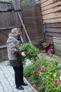 1 октября сотрудники музея В.О. Ключевского провели осеннее благоустройство усадебной территории